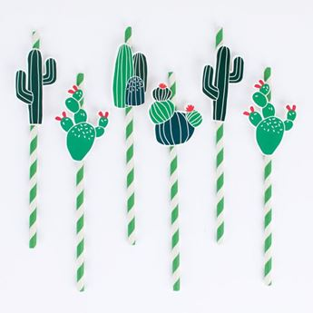 Imagens de Pajitas cactus (12)