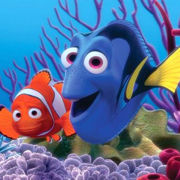 Picture for category Buscando a Dory