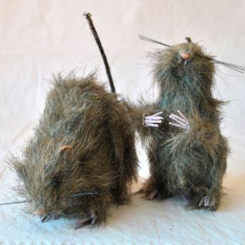 Imagen de Rata con pelo