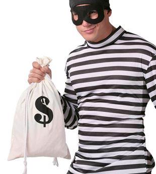 Imagen de Saco de dinero