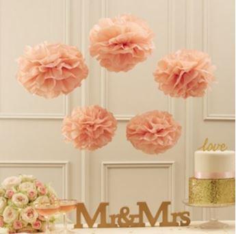 Imagen de Pompón rosa pastel (5)