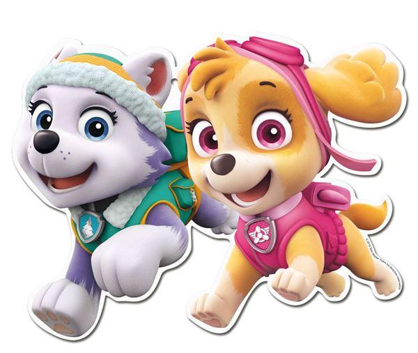 Picture of Troquelados Patrulla Canina Skye y amigos (2)
