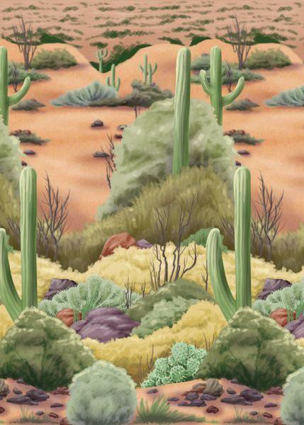 Imagen de Fondo pared Desierto del oeste 12 metros