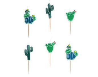 Imagens de Velas Cactus (6)