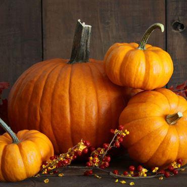 Imagen de categoría Halloween calabaza