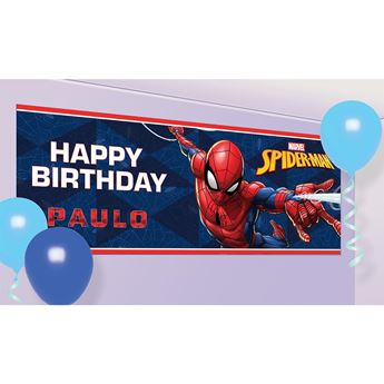 Picture of Banner Spiderman
