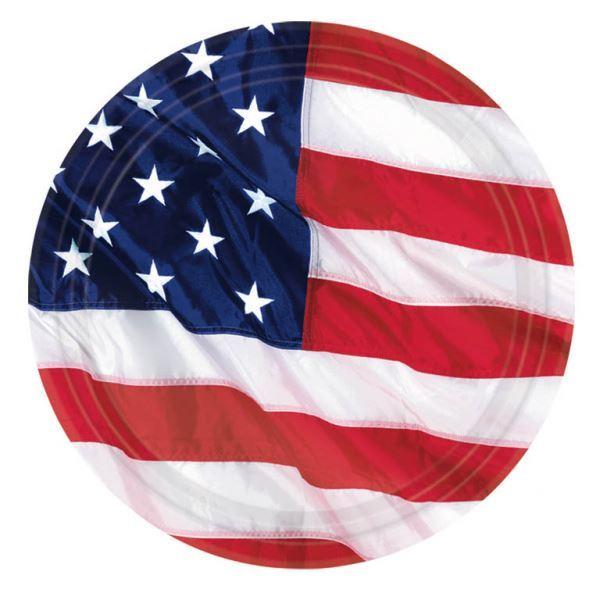 Picture of Platos bandera USA grandes (8)