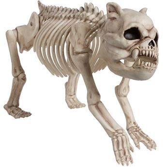 Imagens de Figura perro esqueleto