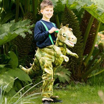 Imagen de Disfraz Dinosaurio (Talla 3-5 años)