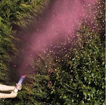 Picture of Lanzador de humo y confeti Niña revelación de género