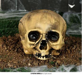 Imagens de Calavera Cráneo 20cm